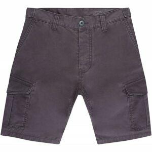 O'Neill LM COMPLEX CARGO SHORTS tmavě šedá 32 - Pánské šortky