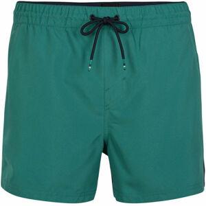 O'Neill PM CALI PANEL SHORTS  S - Pánské šortky do vody